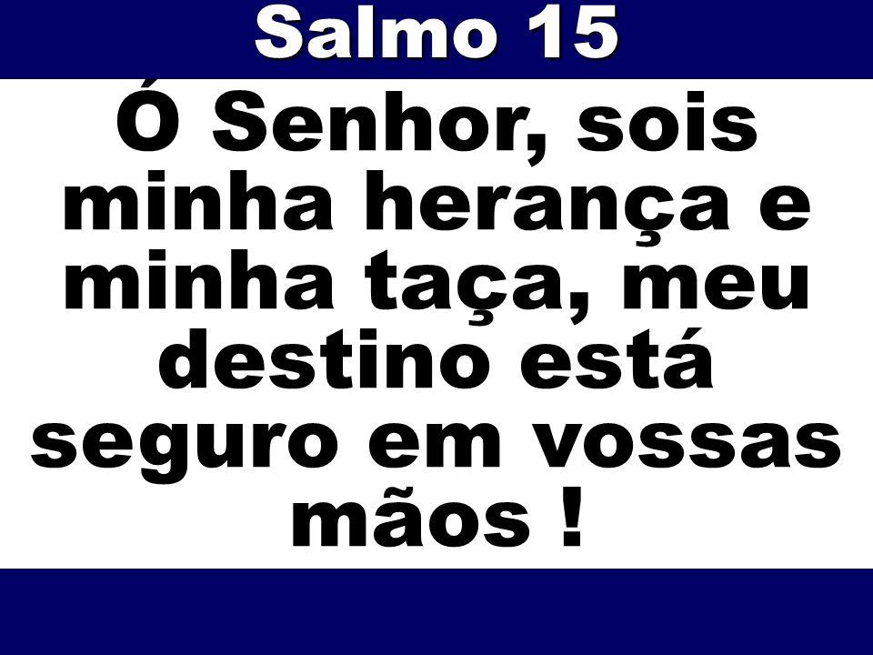 Ó Senhor, sois minha herança e minha taça, meu destino está seguro em vossas mãos ! Salmo 15