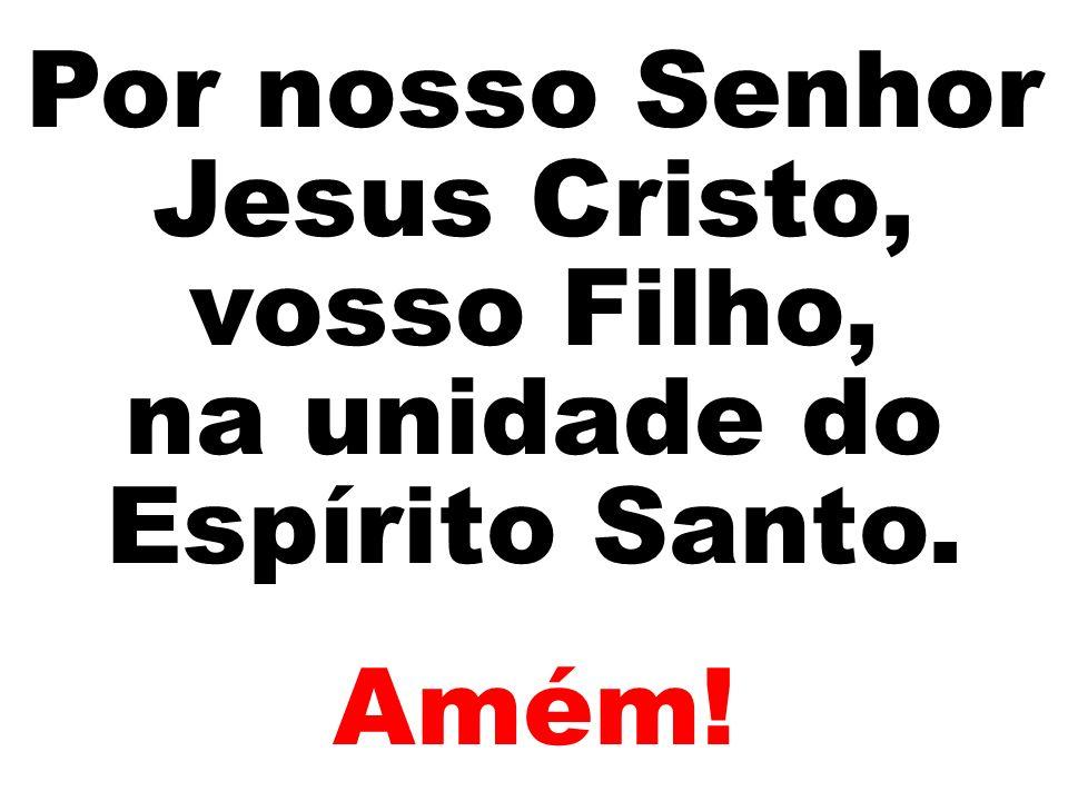 Por nosso Senhor Jesus Cristo, vosso Filho, na unidade do Espírito Santo. Amém!