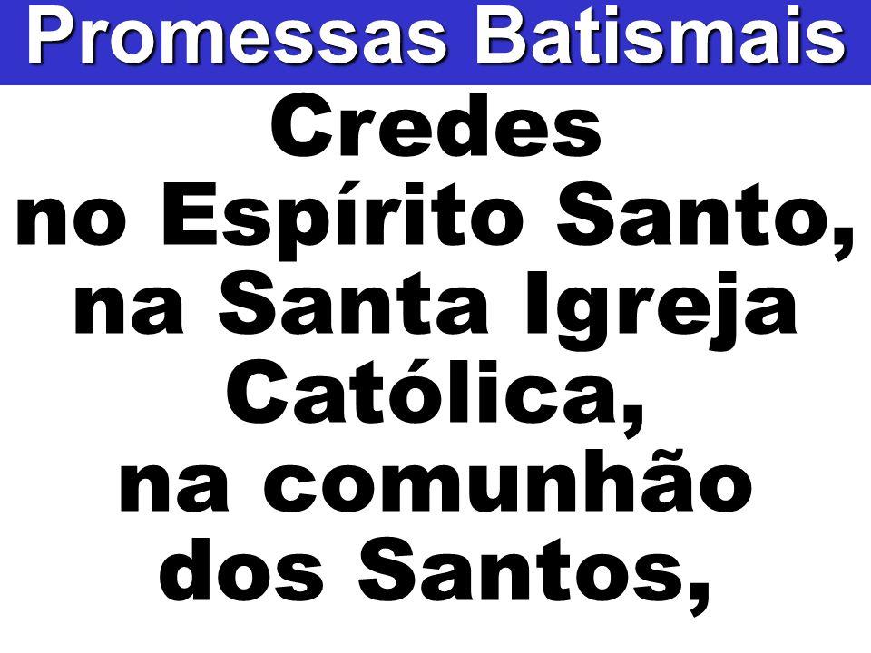 Credes no Espírito Santo, na Santa Igreja Católica, na comunhão dos Santos, Promessas Batismais