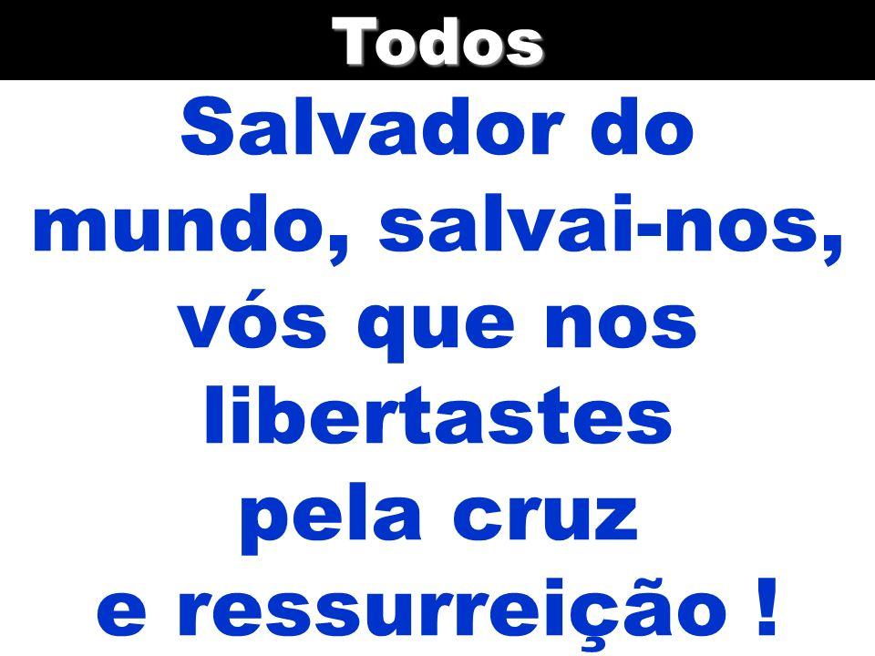 Salvador do mundo, salvai-nos, vós que nos libertastes pela cruz e ressurreição !Todos