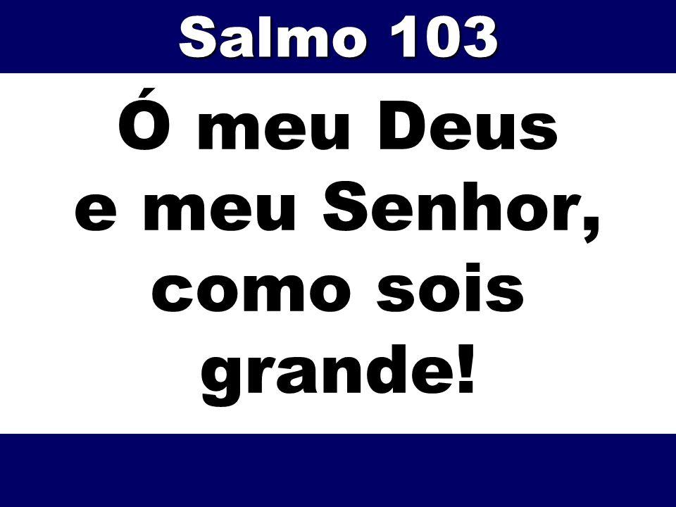 Ó meu Deus e meu Senhor, como sois grande! Salmo 103