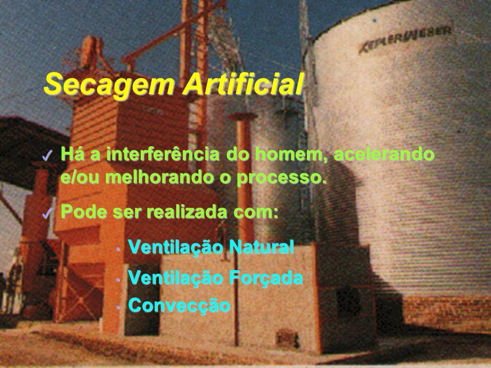 Secagem Artificial 3 Há a interferência do homem, acelerando e/ou melhorando o processo.