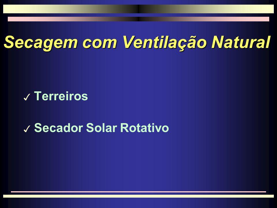 Secagem com Ventilação Natural 3 Terreiros 3 Secador Solar Rotativo