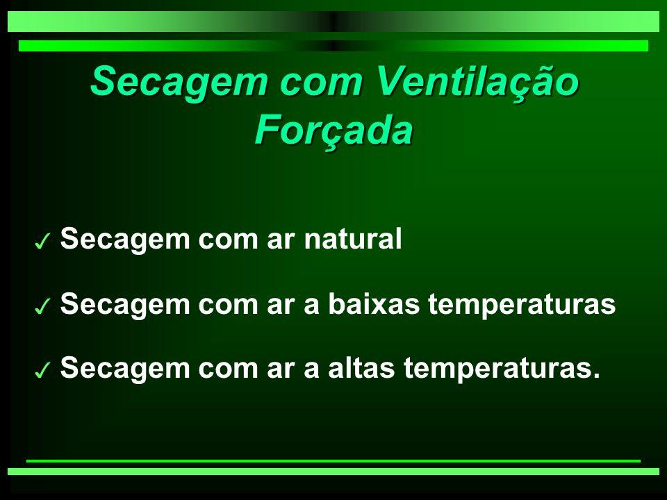 Secagem com Ventilação Forçada 3 Secagem com ar natural 3 Secagem com ar a baixas temperaturas 3 Secagem com ar a altas temperaturas.
