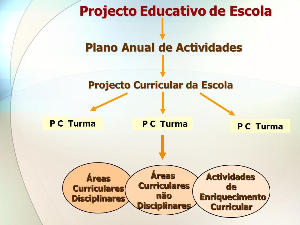 P C Turma Projecto Educativo de Escola Plano Anual de Actividades Projecto Curricular da Escola Áreas CurricularesDisciplinares ÁreasCurricularesnãoDi
