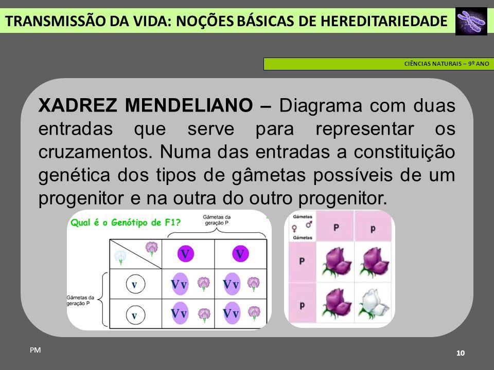 TRANSMISSÃO DA VIDA: NOÇÕES BÁSICAS DE HEREDITARIEDADE PM CIÊNCIAS NATURAIS – 9º ANO 10 XADREZ MENDELIANO – Diagrama com duas entradas que serve para