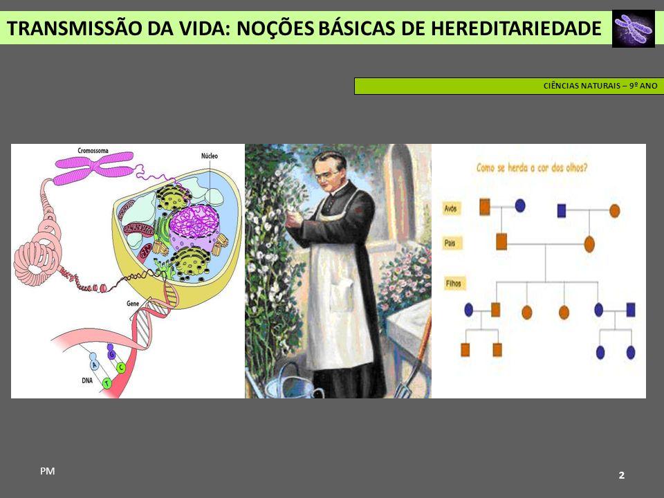 TRANSMISSÃO DA VIDA: NOÇÕES BÁSICAS DE HEREDITARIEDADE PM CIÊNCIAS NATURAIS – 9º ANO 2