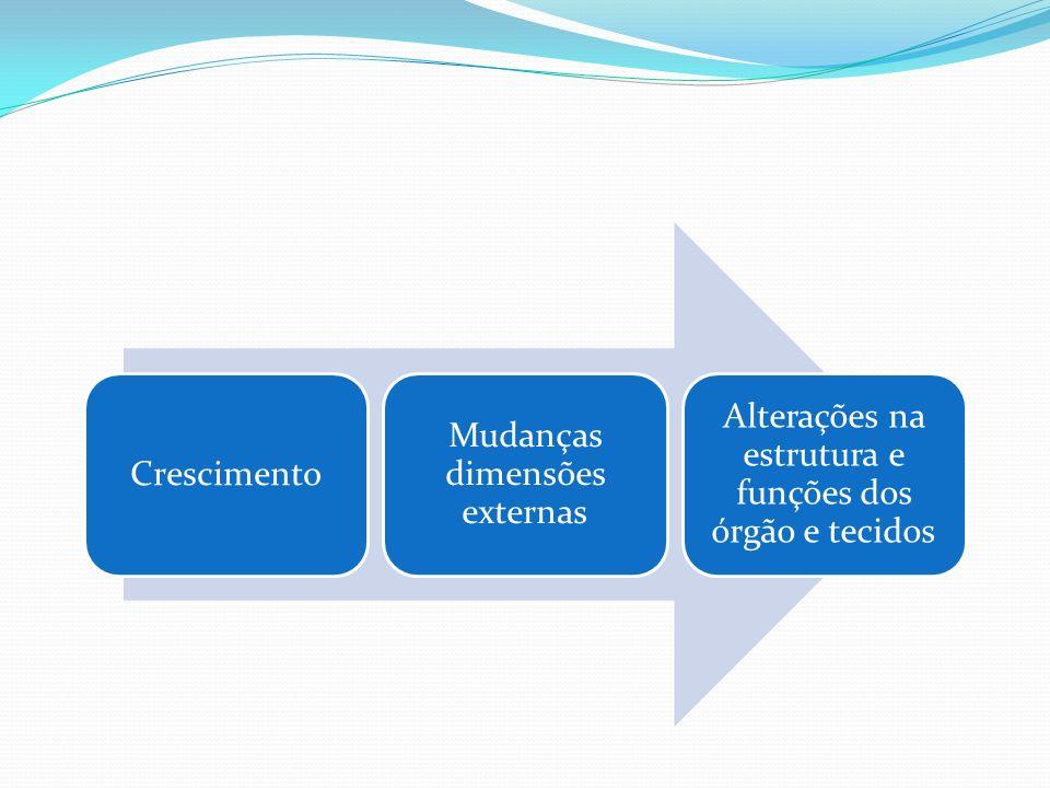 Crescimento Mudanças dimensões externas Alterações na estrutura e funções dos órgão e tecidos
