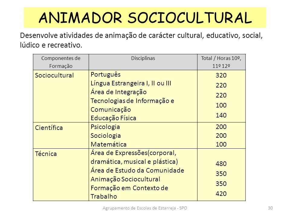 Agrupamento de Escolas de Estarreja - SPO ANIMADOR SOCIOCULTURAL Desenvolve atividades de animação de carácter cultural, educativo, social, lúdico e r