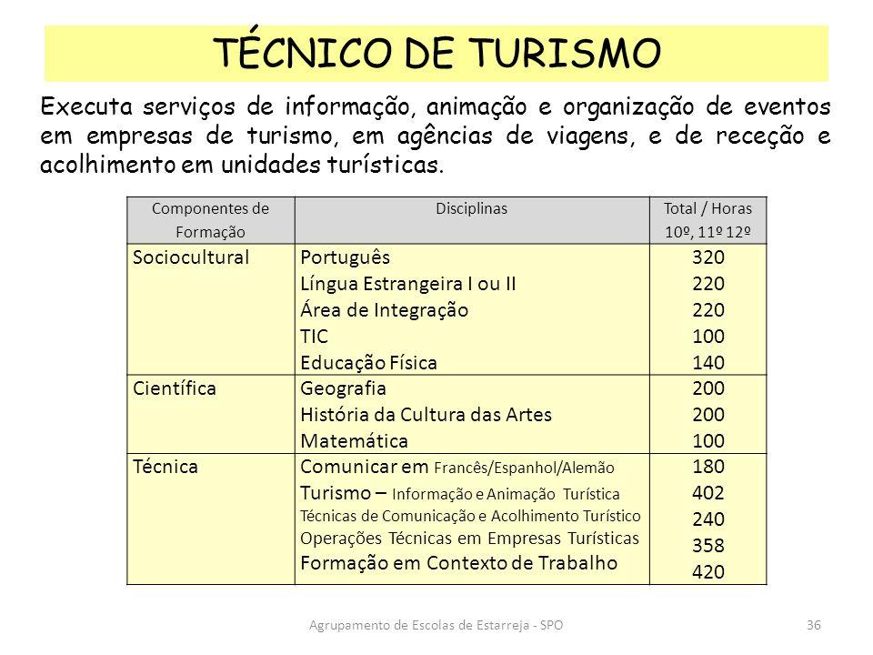 Agrupamento de Escolas de Estarreja - SPO TÉCNICO DE TURISMO Executa serviços de informação, animação e organização de eventos em empresas de turismo,