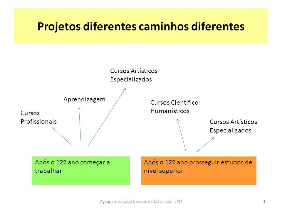 Projetos diferentes caminhos diferentes Após o 12º ano começar a trabalhar Após o 12º ano prosseguir estudos de nível superior Cursos Profissionais Ap