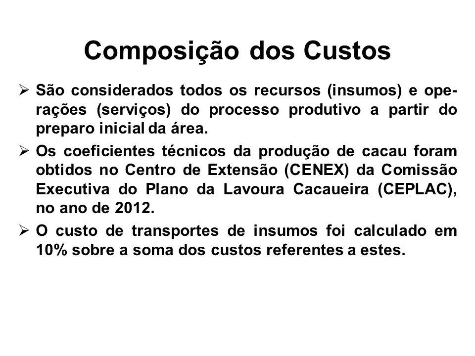 Composição dos Custos São considerados todos os recursos (insumos) e ope- rações (serviços) do processo produtivo a partir do preparo inicial da área.