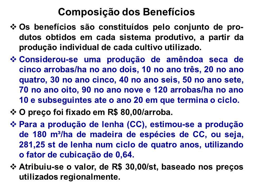 Composição dos Benefícios Os benefícios são constituídos pelo conjunto de pro- dutos obtidos em cada sistema produtivo, a partir da produção individua