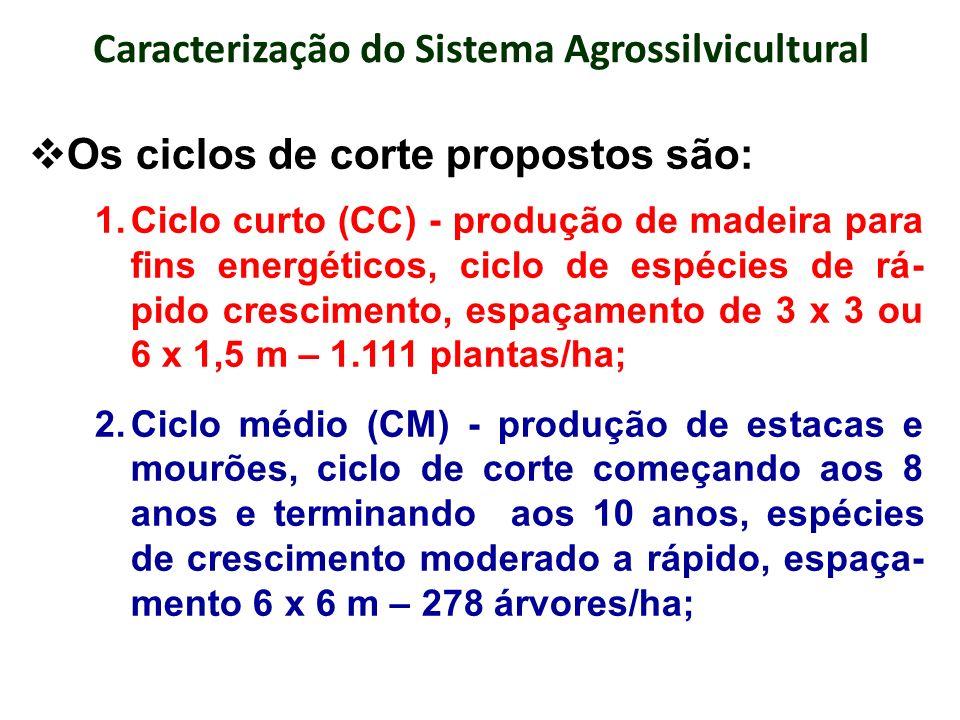 Caracterização do Sistema Agrossilvicultural Os ciclos de corte propostos são: 3.Ciclo intermediário (CI) - produção de madeira serrada, ciclos de corte começando aos 15 anos – primeiro desbaste – e terminando aos 20 anos no corte final, espaçamento 12 x 6 m, 139 árvores/ha e; 4.Ciclo longo (CL) - representa um bônus eco- nômico e ambiental (reserva verde) ao produtor rural, espécies de crescimento moderado a lento, produtoras de madeira nobre, espaça- mento 24 x 24 m, com 17 árvores/ha.