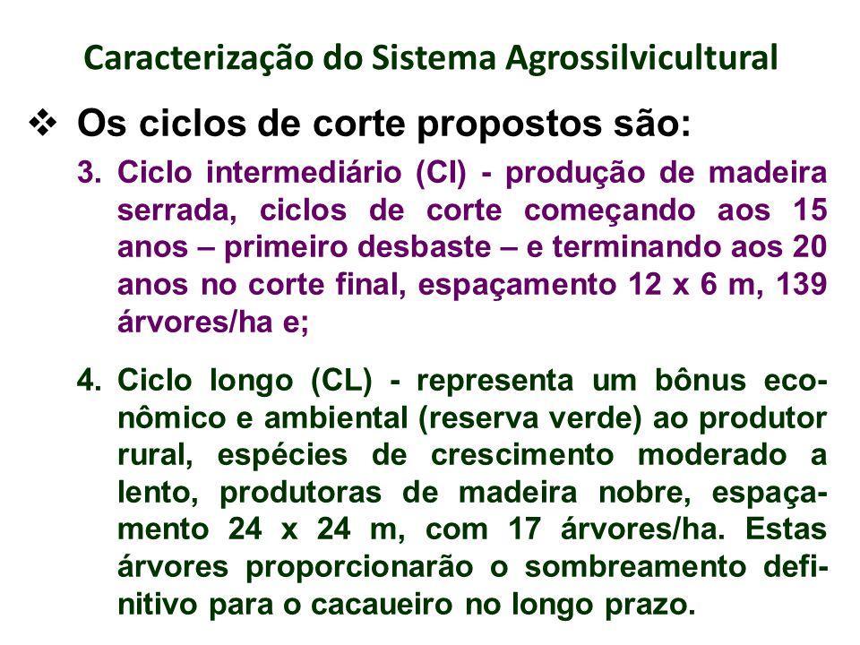 Caracterização do Sistema Agrossilvicultural Os ciclos de corte propostos são: 3.Ciclo intermediário (CI) - produção de madeira serrada, ciclos de cor