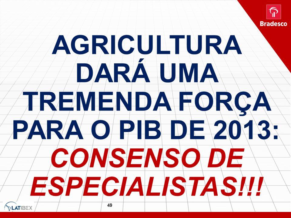 49 AGRICULTURA DARÁ UMA TREMENDA FORÇA PARA O PIB DE 2013: CONSENSO DE ESPECIALISTAS!!!