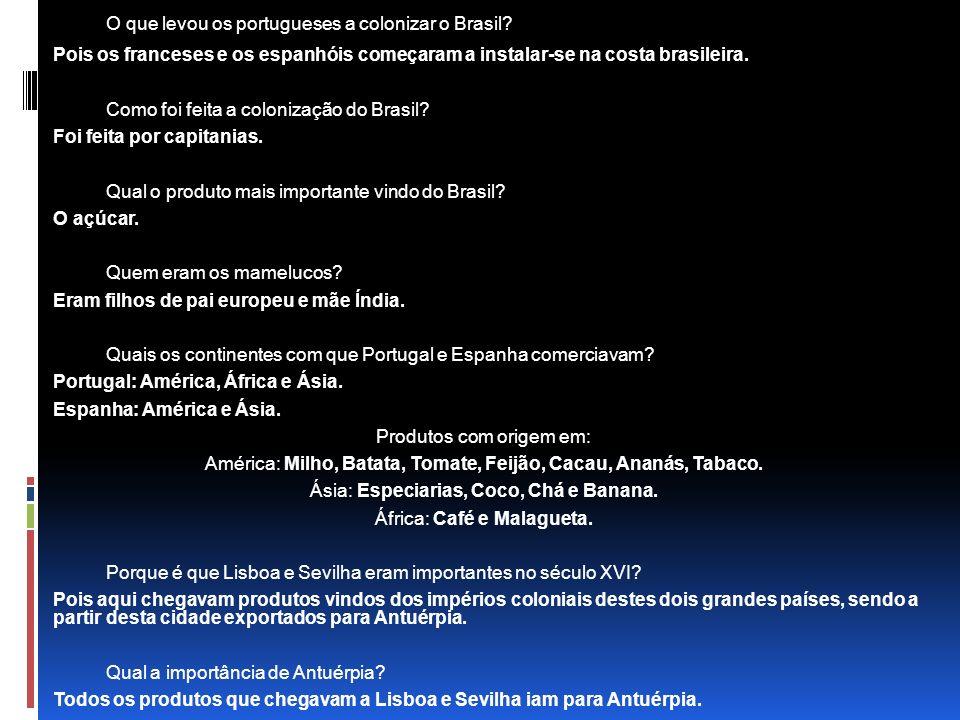 O que levou os portugueses a colonizar o Brasil.