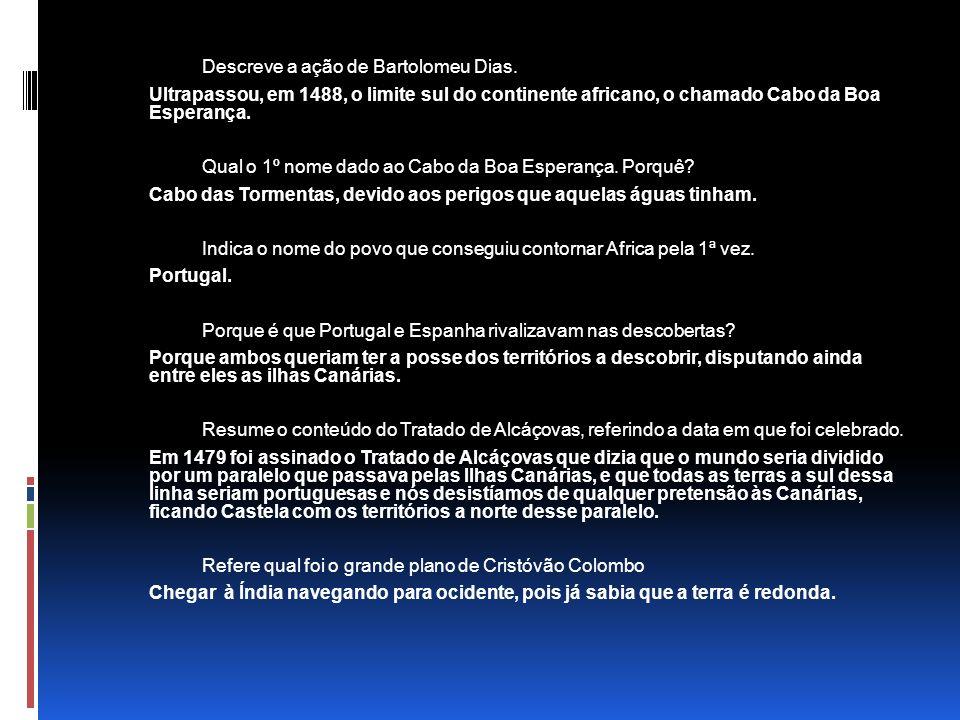 Descreve a ação de Bartolomeu Dias.