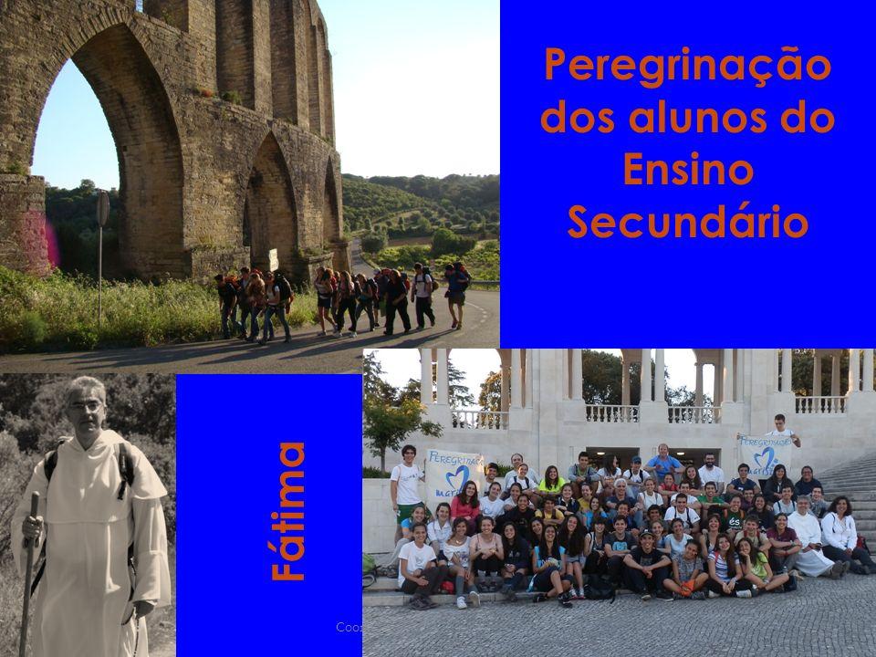 Coordenação do Ensino Secundário Peregrinação dos alunos do Ensino Secundário Fátima