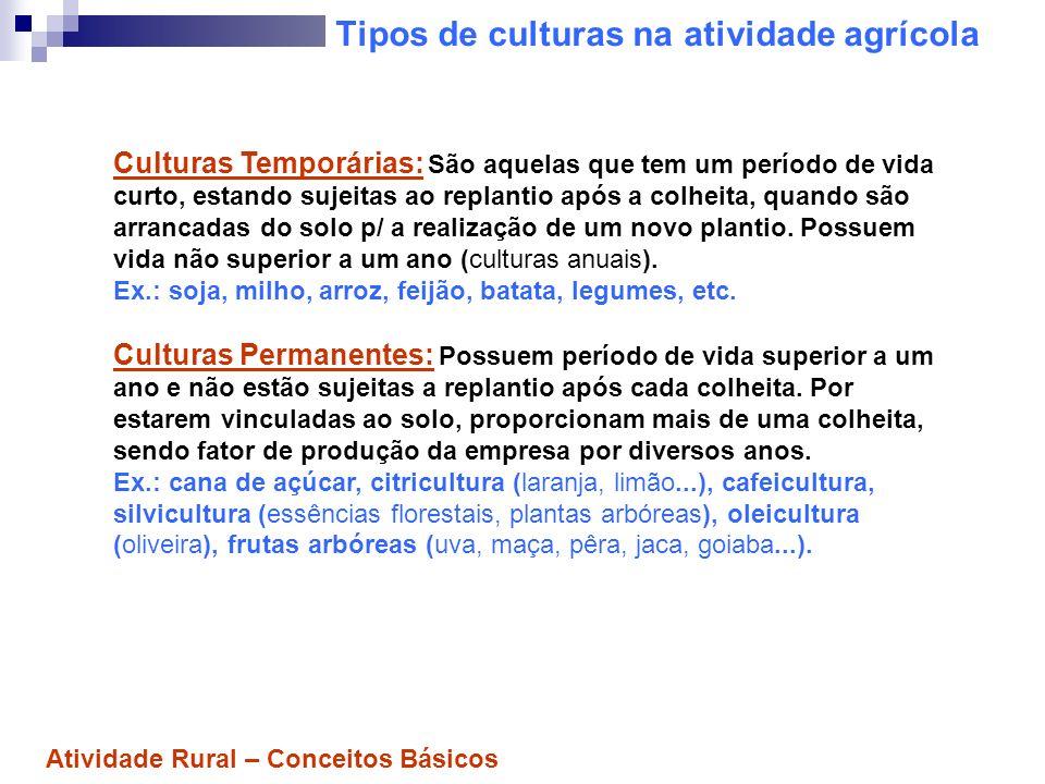 Tipos de culturas na atividade agrícola Culturas Temporárias: São aquelas que tem um período de vida curto, estando sujeitas ao replantio após a colhe