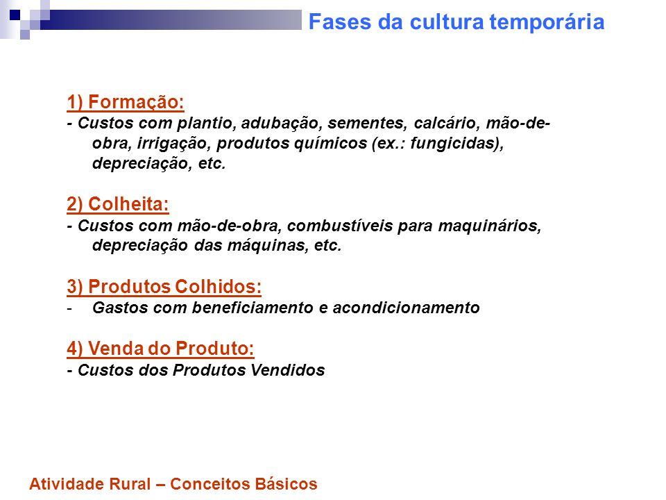 Fases da cultura temporária 1) Formação: - Custos com plantio, adubação, sementes, calcário, mão-de- obra, irrigação, produtos químicos (ex.: fungicid
