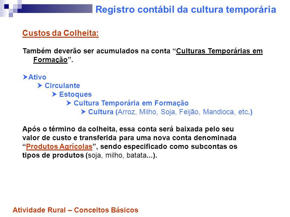 Registro contábil da cultura temporária Custos da Colheita: Também deverão ser acumulados na conta Culturas Temporárias em Formação. Ativo Circulante