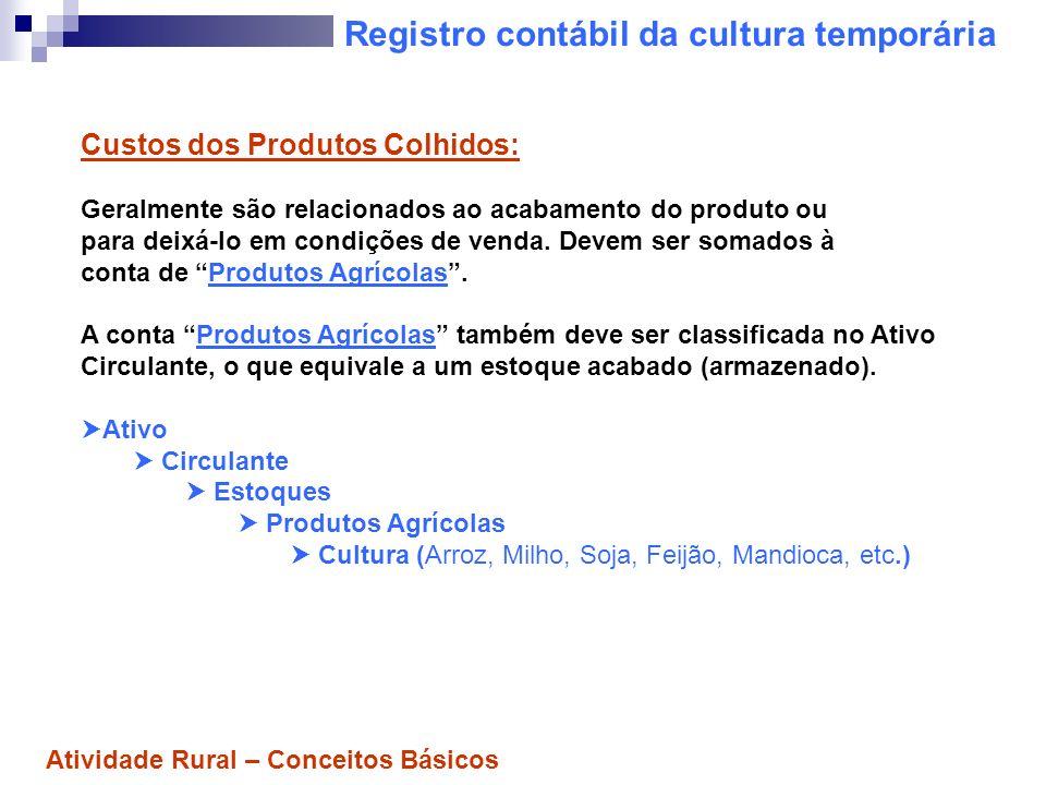 Registro contábil da cultura temporária Custos dos Produtos Colhidos: Geralmente são relacionados ao acabamento do produto ou para deixá-lo em condiçõ