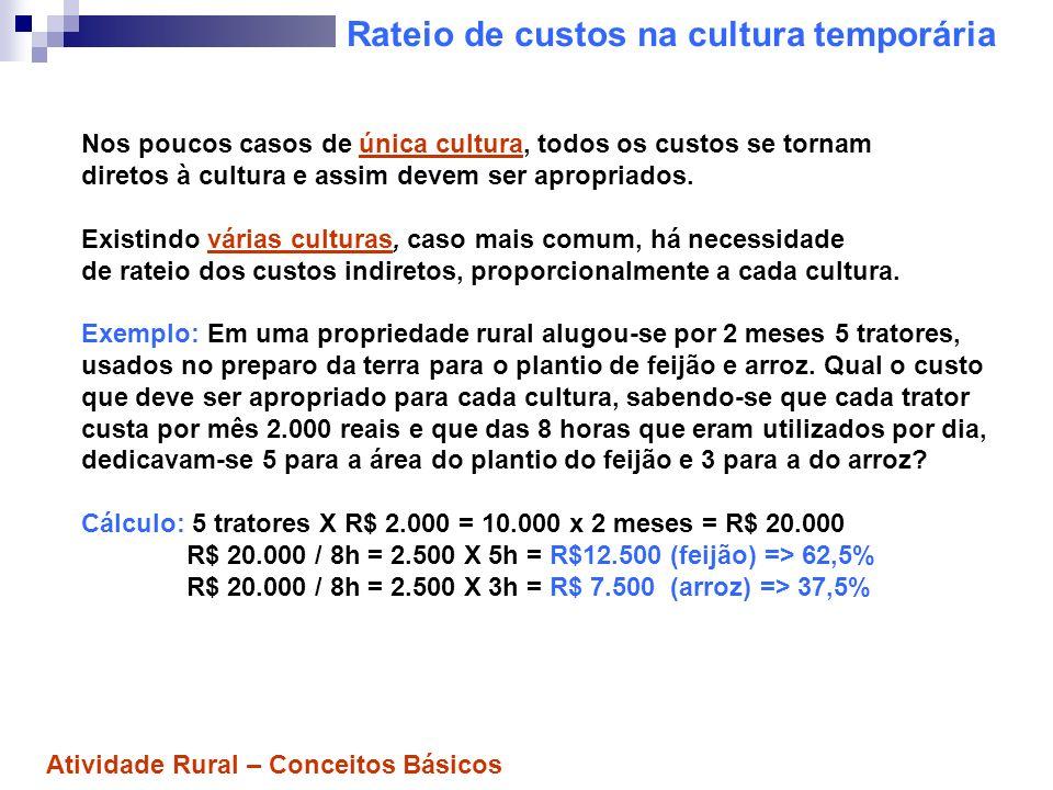Rateio de custos na cultura temporária Nos poucos casos de única cultura, todos os custos se tornam diretos à cultura e assim devem ser apropriados. E