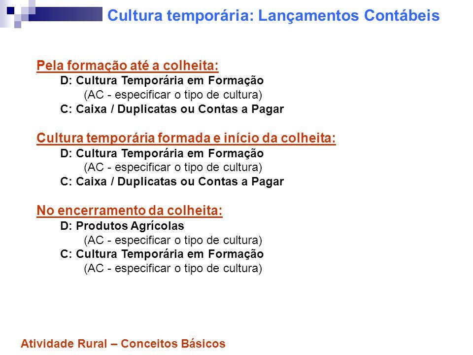 Cultura temporária: Lançamentos Contábeis Pela formação até a colheita: D: Cultura Temporária em Formação (AC - especificar o tipo de cultura) C: Caix