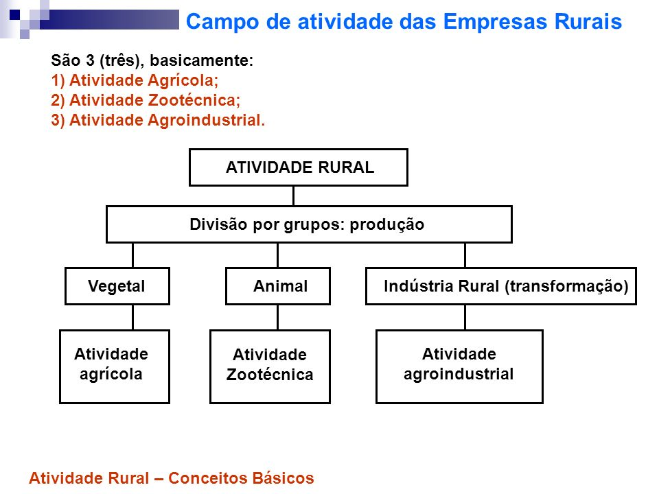 Campo de atividade das Empresas Rurais São 3 (três), basicamente: 1) Atividade Agrícola; 2) Atividade Zootécnica; 3) Atividade Agroindustrial. ATIVIDA