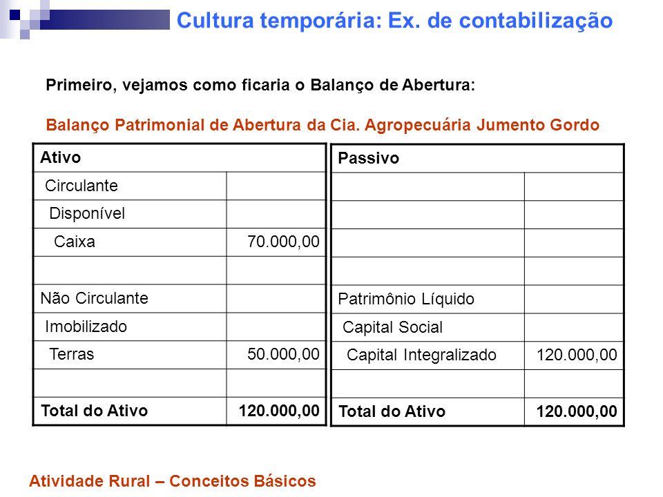 Cultura temporária: Ex. de contabilização Ativo Circulante Disponível Caixa70.000,00 Não Circulante Imobilizado Terras50.000,00 Total do Ativo120.000,