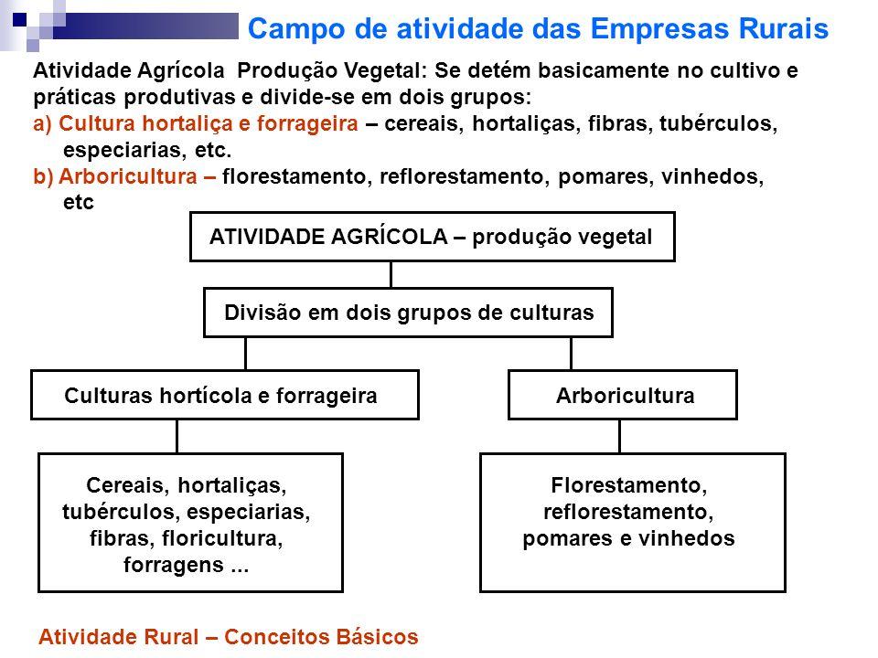 Campo de atividade das Empresas Rurais Atividade Agrícola Produção Vegetal: Se detém basicamente no cultivo e práticas produtivas e divide-se em dois