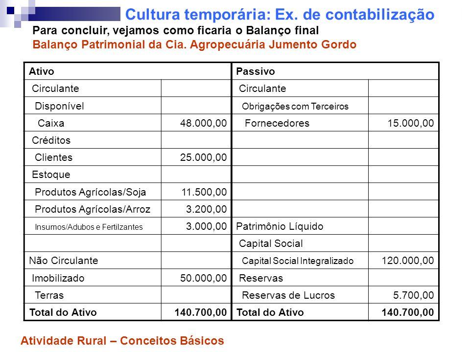 Cultura temporária: Ex. de contabilização Ativo Circulante Disponível Caixa48.000,00 Créditos Clientes25.000,00 Estoque Produtos Agrícolas/Soja11.500,