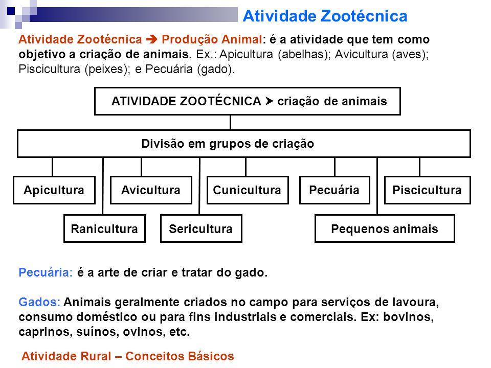 Atividade Zootécnica Atividade Zootécnica Produção Animal: é a atividade que tem como objetivo a criação de animais. Ex.: Apicultura (abelhas); Avicul