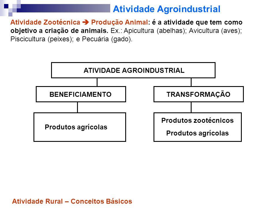 Atividade Agroindustrial Atividade Zootécnica Produção Animal: é a atividade que tem como objetivo a criação de animais. Ex.: Apicultura (abelhas); Av