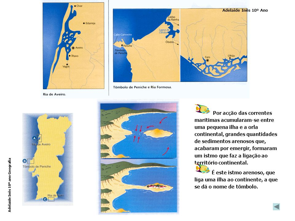 Por acção das correntes marítimas acumularam-se entre uma pequena ilha e a orla continental, grandes quantidades de sedimentos arenosos que, acabaram