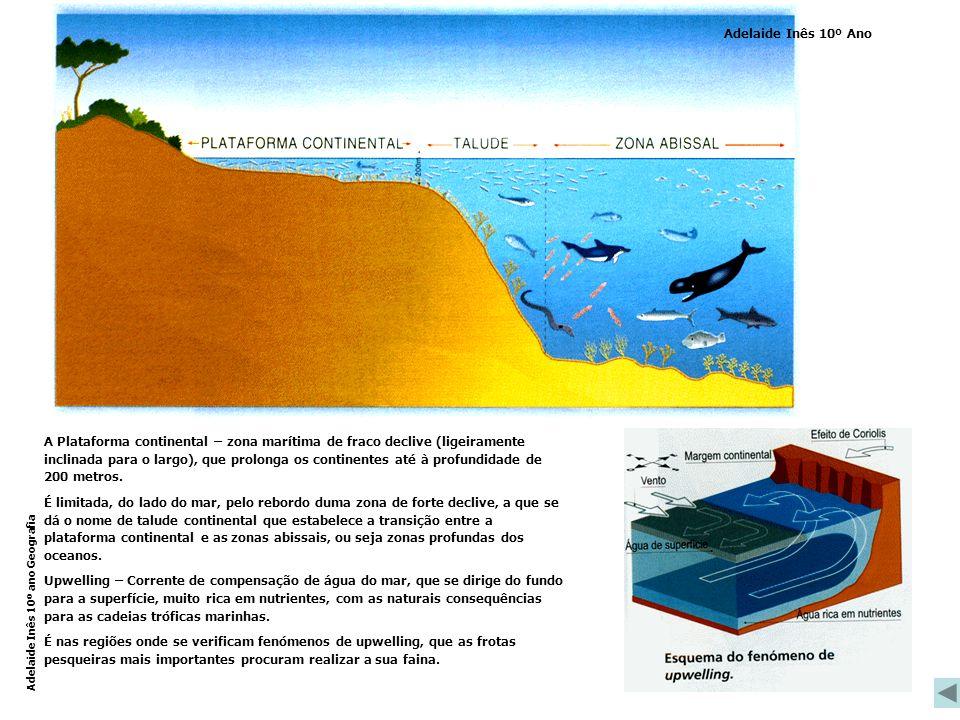 A Plataforma continental – zona marítima de fraco declive (ligeiramente inclinada para o largo), que prolonga os continentes até à profundidade de 200 metros.