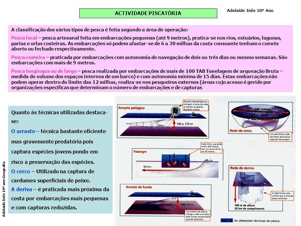 ACTIVIDADE PISCATÓRIA A classificação dos vários tipos de pesca é feita segundo a área de operação: Pesca local – pesca artesanal feita em embarcações