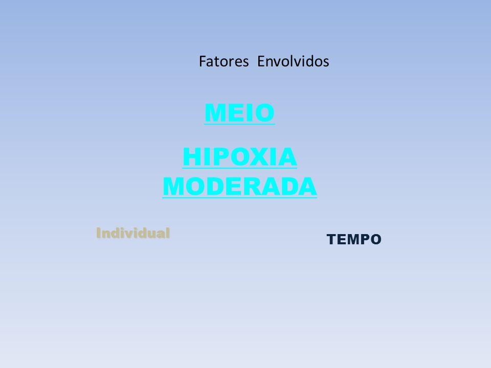 Fatores Envolvidos Individual TEMPO MEIO HIPOXIA MODERADA