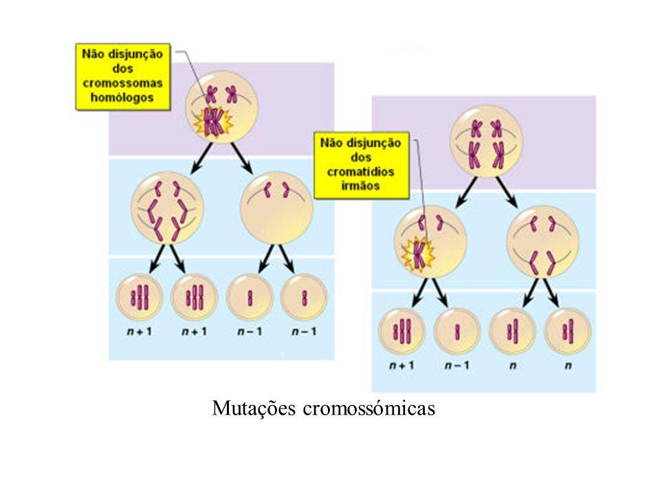 Mutações cromossómicas