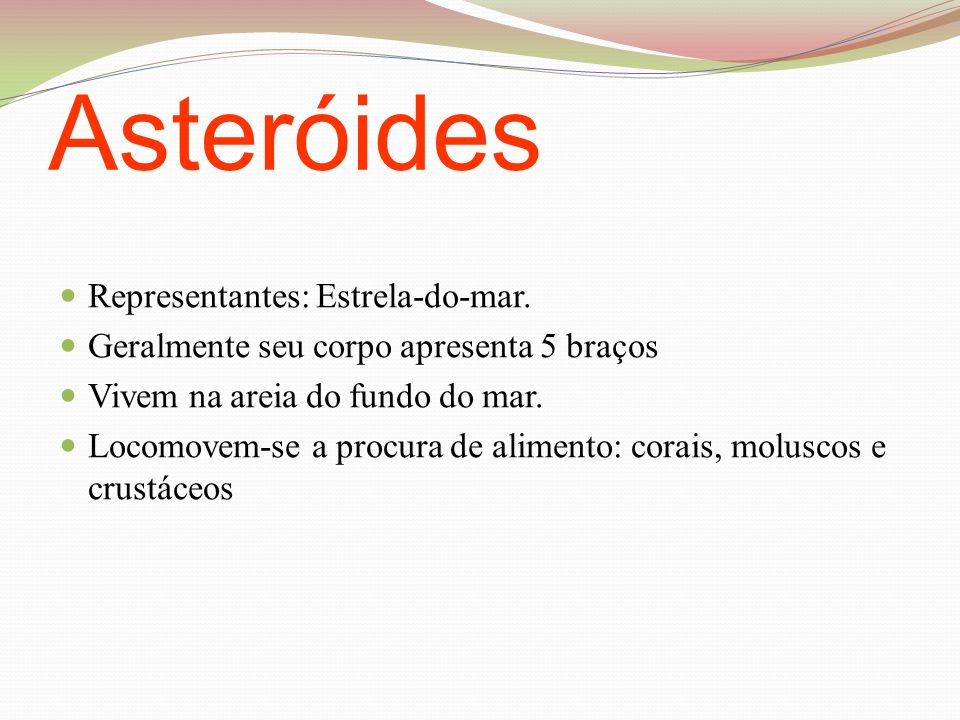 Asteróides Representantes: Estrela-do-mar.