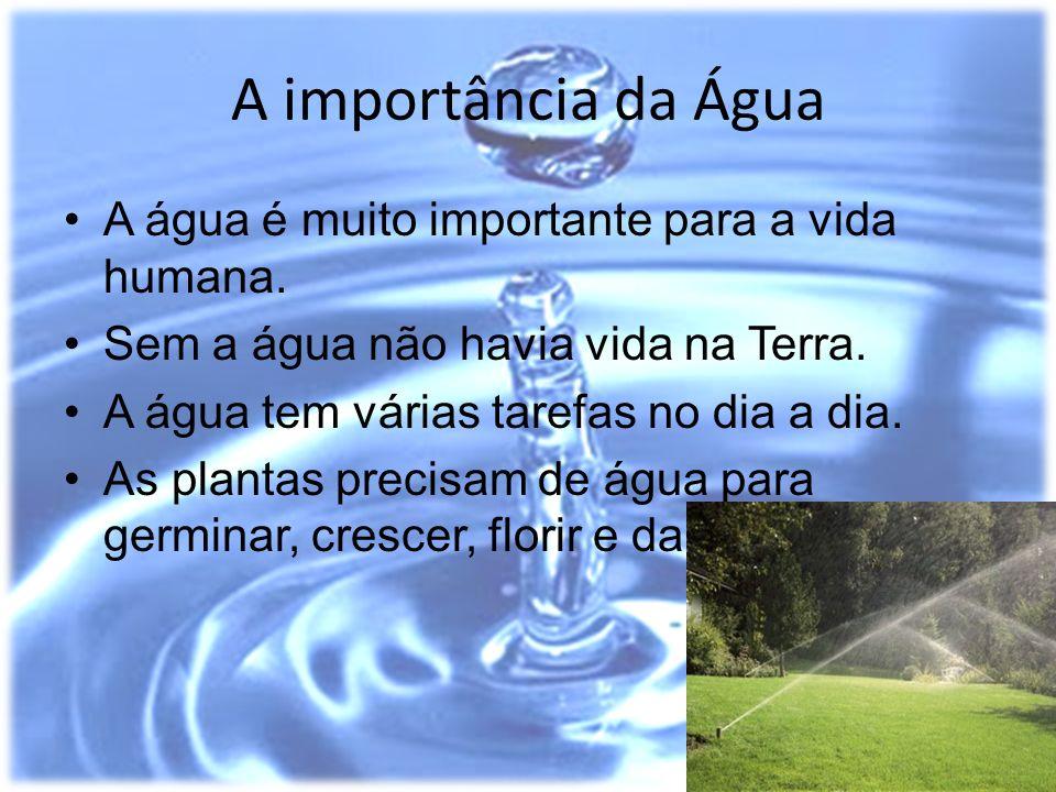A importância da Água A água é muito importante para a vida humana. Sem a água não havia vida na Terra. A água tem várias tarefas no dia a dia. As pla