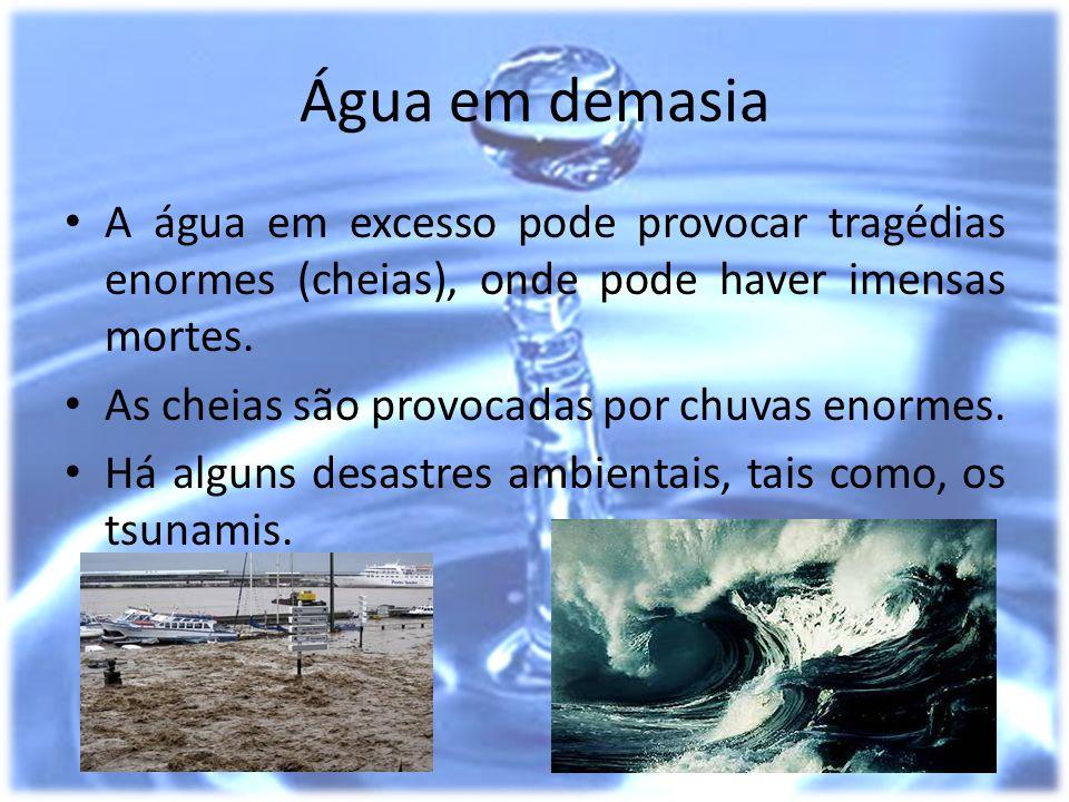 Água em demasia A água em excesso pode provocar tragédias enormes (cheias), onde pode haver imensas mortes. As cheias são provocadas por chuvas enorme