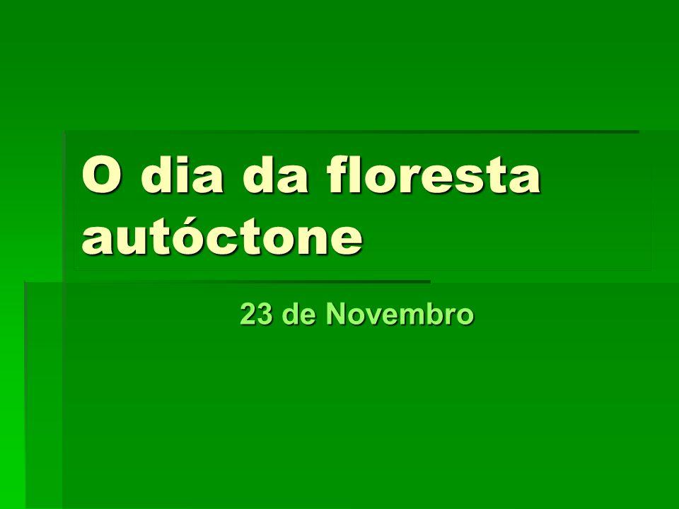 Ano lectivo 2007/20088º CL42 As florestas autóctones são importantes para a manutenção da fertilidade do espaço rural, do equilíbrio biológico das paisagens e da diversidade dos recursos genéticos.