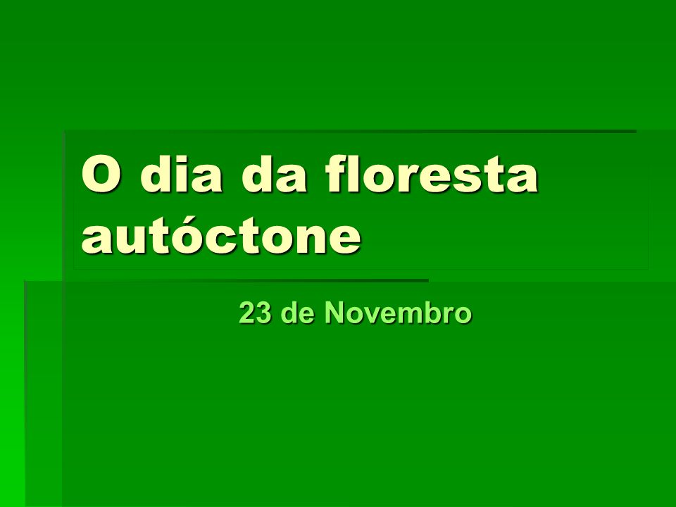 Ano lectivo 2007/2008 8º CL2 O que é a floresta autóctone.
