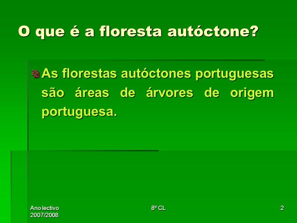 Ano lectivo 2007/2008 8º CL2 O que é a floresta autóctone? As florestas autóctones portuguesas são áreas de árvores de origem portuguesa.