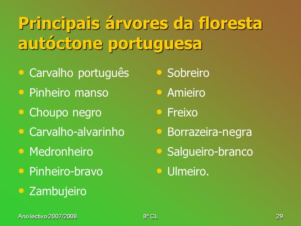 Ano lectivo 2007/20088º CL29 Principais árvores da floresta autóctone portuguesa Carvalho português Pinheiro manso Choupo negro Carvalho-alvarinho Med