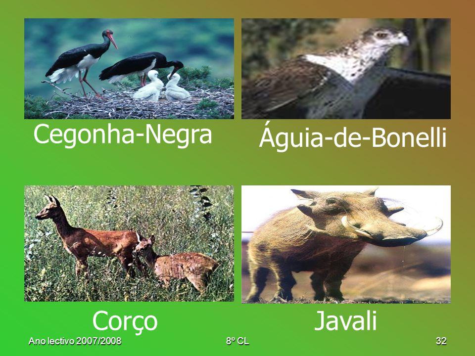 Ano lectivo 2007/20088º CL32 Cegonha-Negra Águia-de-Bonelli CorçoJavali