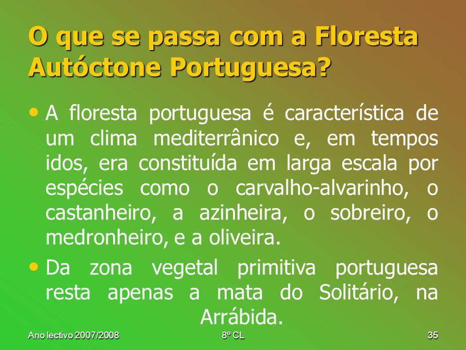 Ano lectivo 2007/20088º CL35 O que se passa com a Floresta Autóctone Portuguesa? A floresta portuguesa é característica de um clima mediterrânico e, e