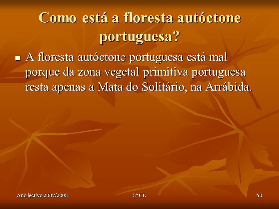 Ano lectivo 2007/20088º CL50 Como está a floresta autóctone portuguesa? A floresta autóctone portuguesa está mal porque da zona vegetal primitiva port